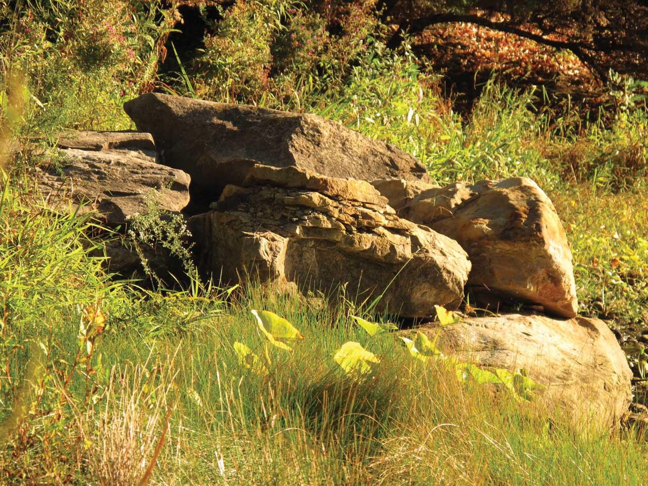 bouldersbypond