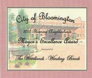 2010-mayor's-excellence-award